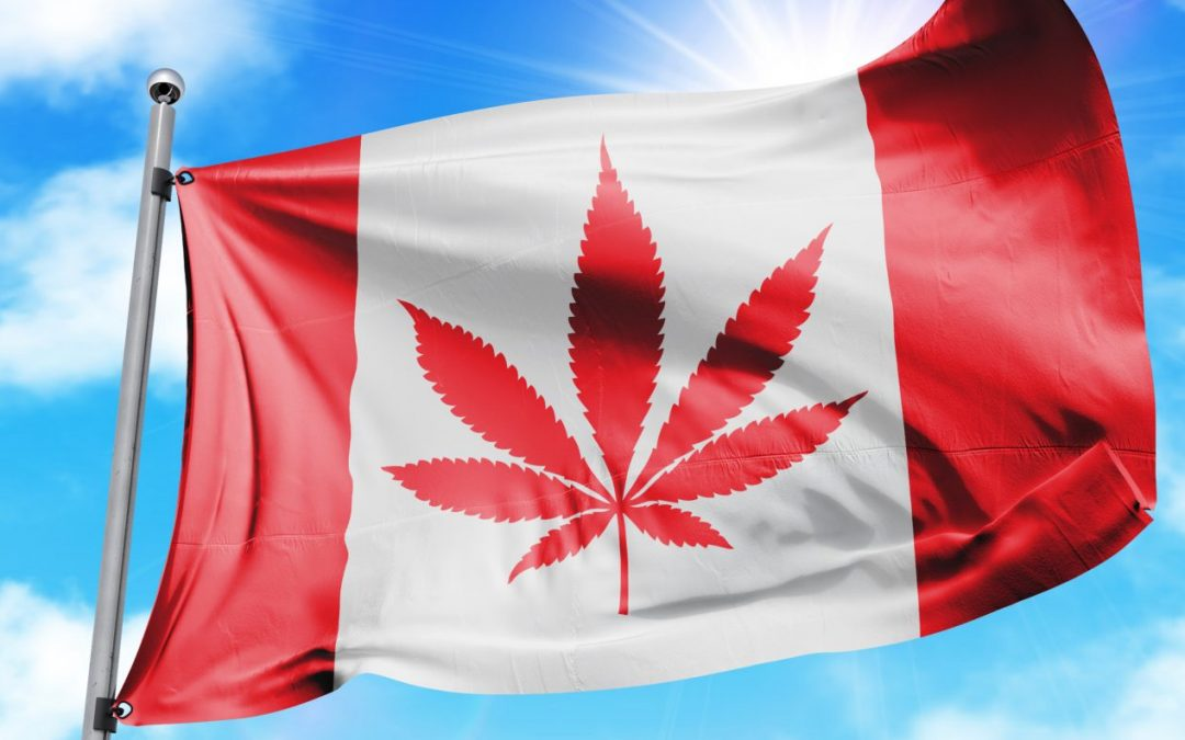6 Things You Need to Know About Cannabis Legalization in Canada